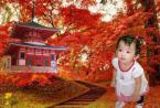 ユーザー KATUTAN の写真