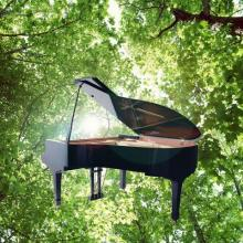 Sunshine and Piano